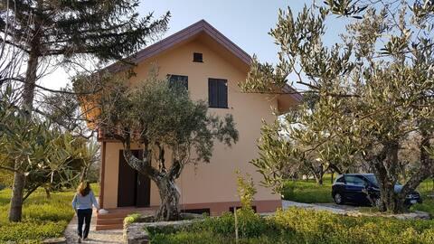 CASA BENIAMINO immersed in olive grove Jonio coast