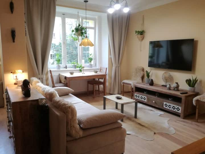 Cosy apartment in the Heart of Prague