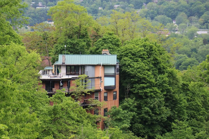 DECK OVER LOOKING GORGE IN THE HEART OF CORNELL!