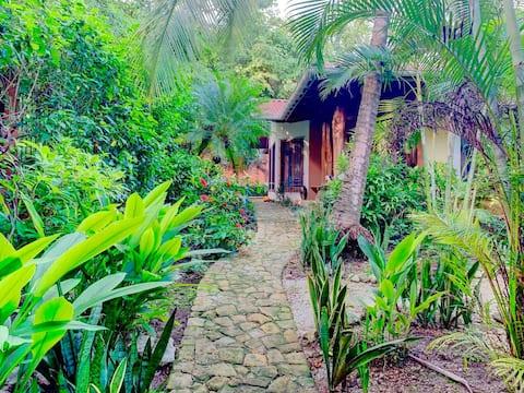 3 bedroom pool oasis, steps from beach/restaurants