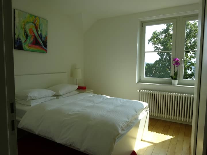Zimmer mit herrlichem Blick auf See und Berge