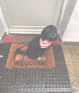 Even little legs Charlie  can negotiate the entrance.  There are other access points too depending on the need to accommodate luggage  and paraphernalia!