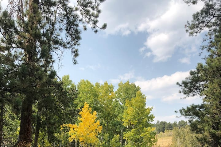 * RV & Tent Space on Private Land near Nederland *