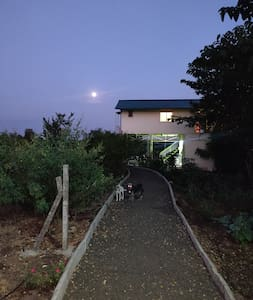 the path way to cottages, street lights are provided