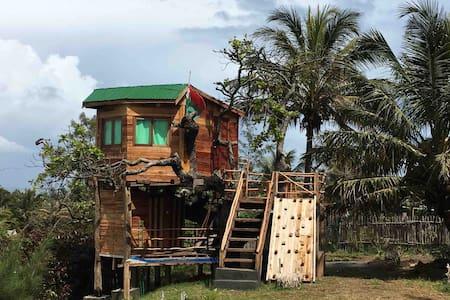 Robinson Tree House (Tragno hazo)