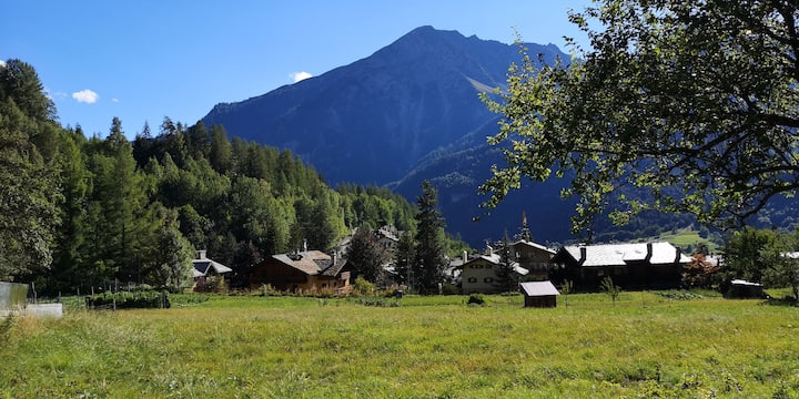 Charme du Mont Blanc