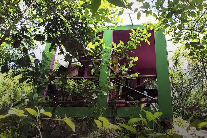 Jamiro House | 100% Autossustentável
