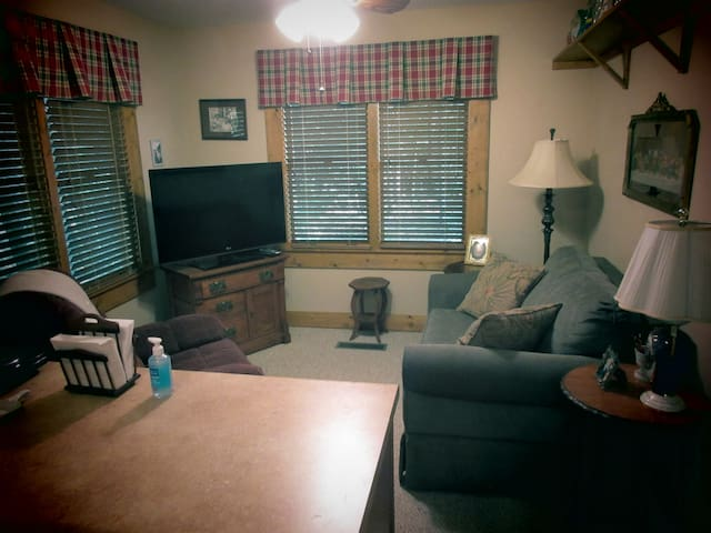 Sitting area with television, comfortable seating, WiFi, and adequate lighting. In addition, views out the windows provide a true outdoor scene of deep woods.