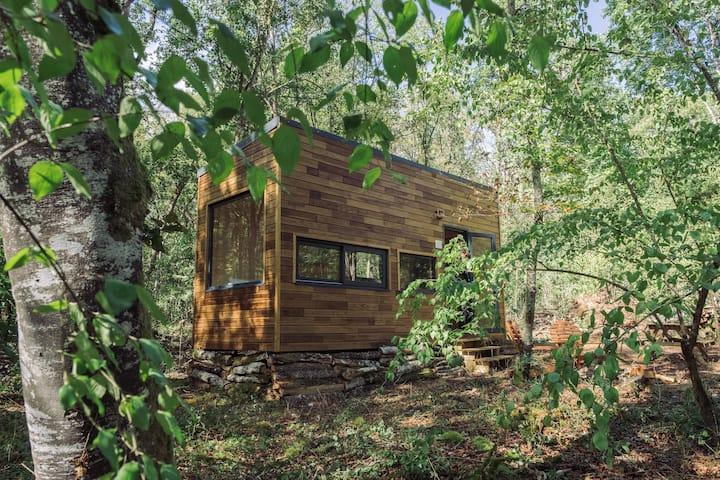Escapade dans une Tiny House en pleine forêt