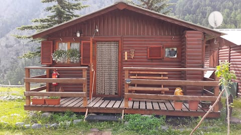 Small chalet in a meadow for 4 people