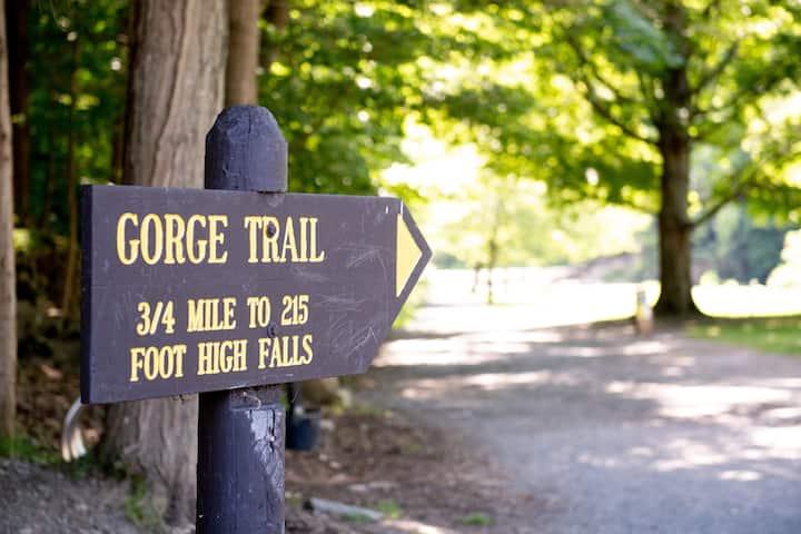 Parkview Jr. Suite-Hiking Trails-Walk to T. Falls