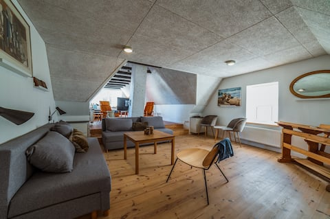 Spacious newly renovated apartment