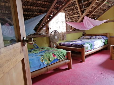 Bed & Breakfast DORM  - La Casa Mompiche -