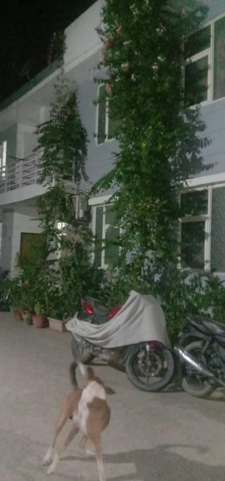 Home stay in a Duplex villa with terrace