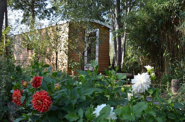 B&B Polderview pracht locatie midden in de natuur.