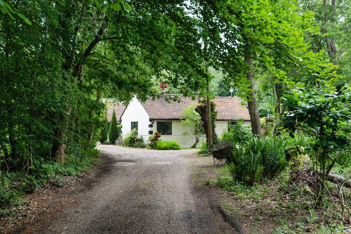 Ideal quiet Cottage hide away, close to Box Hill