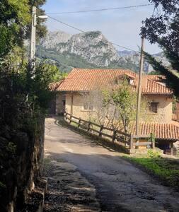 Camino de entrada a la casa