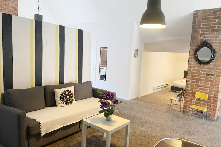 SPACIOUS & COZY OPEN LOFT, RIGHT OFF WOODWARD!