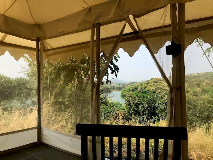 Dera Baghdarrah - A Luxury Wildlife Camp #3
