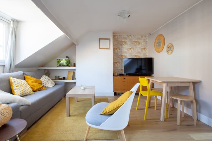 Nice modern apartment under the roofs in Lille