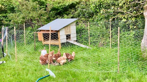 ❤HelpYourself to Eggs! Whole Apartment. Ilkley❤