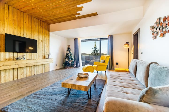 Cosy Loft flat in Silver Mountain of Poiana Brasov