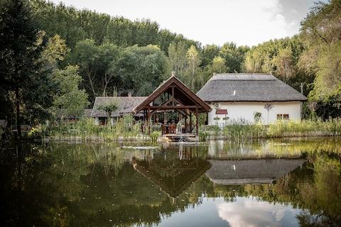 Zarah Tanya's Forest Cottage