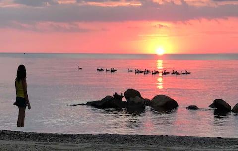 Retiro especial de Abby en el lago Erie