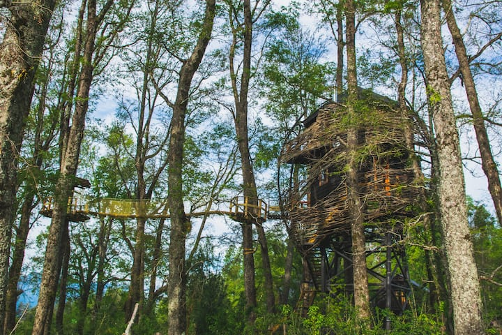 "Tree House Pucón ""Swallow Nest"" - Duplex deluxe"