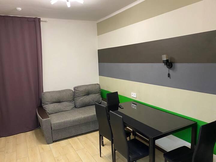 Однокомнатная квартира около аэропорта Шереметьево