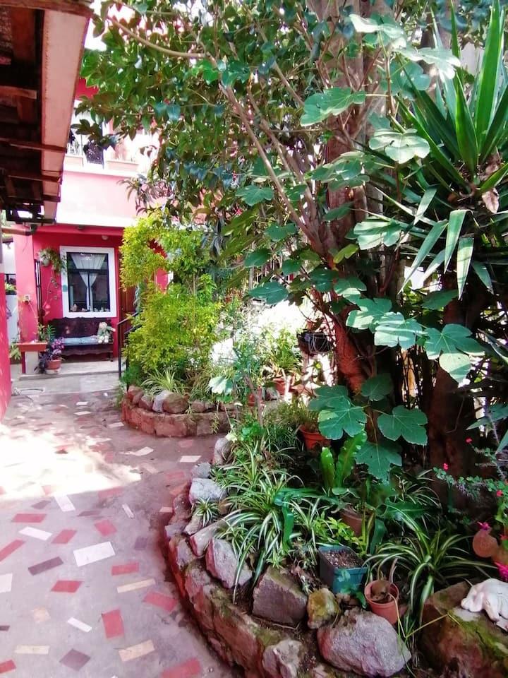 """Casa Buganvillea - """"Francia"""" Apartment studio"""