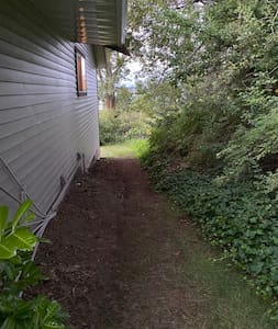 Walkway along side of house, motion light in place to provide light after dark