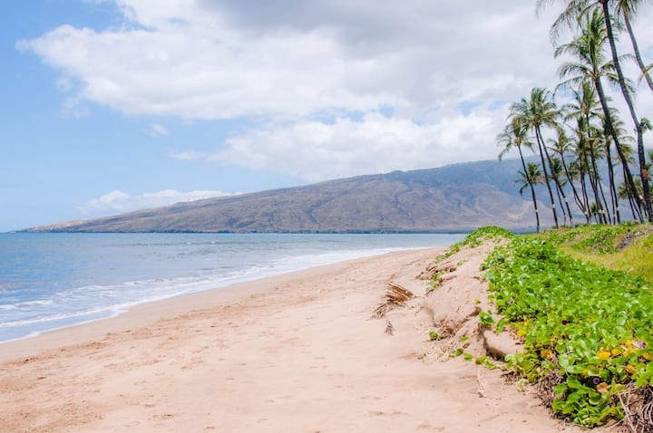 KIHEI SANDS BEACHFRONT A1 GORGEOUS REMODELED CONDO