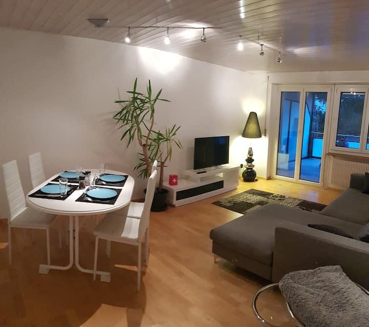 3 Zimmer Appartement mit Terrasse & Parkplatz