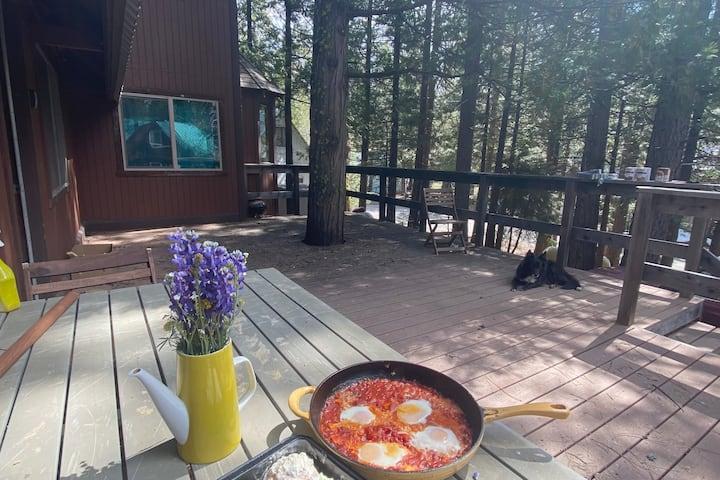 Cozy Cabin in Lassen