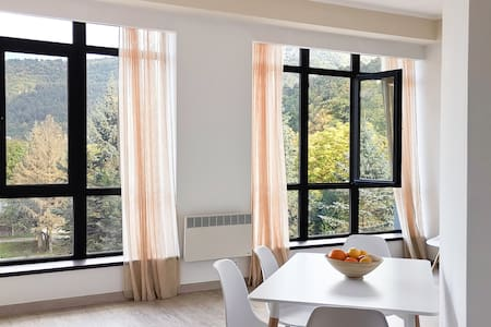 Cosy minimalistic apt. In Dilijan with great view