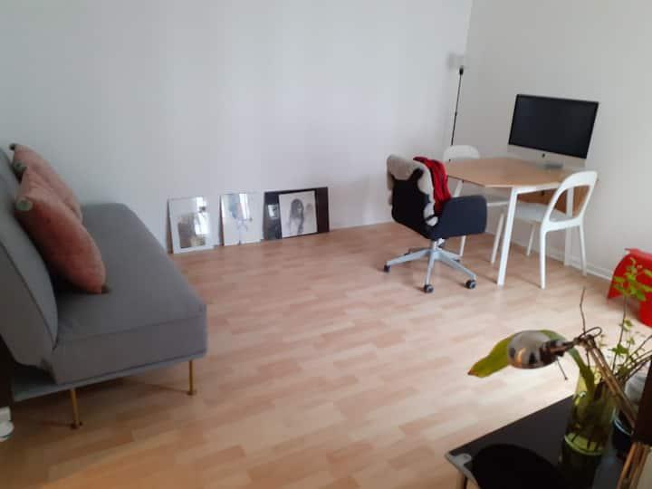 Bright cozy modern apartment