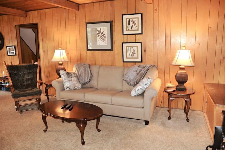 Brand new queen sofa bed