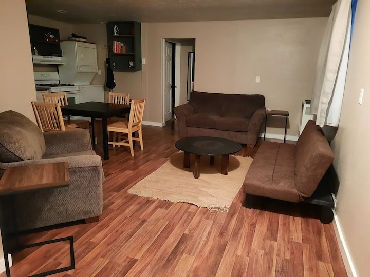 Cozy 3 bedroom private apartment near downtown