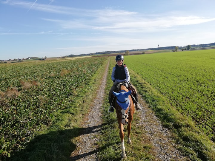 Urlaub auf dem Bauernhof mit Wellness und Pferden