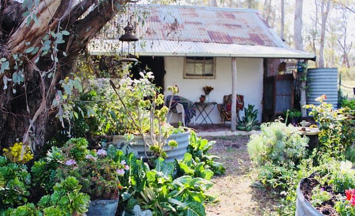 Beautiful 1850's miners cottage Restoration Aust