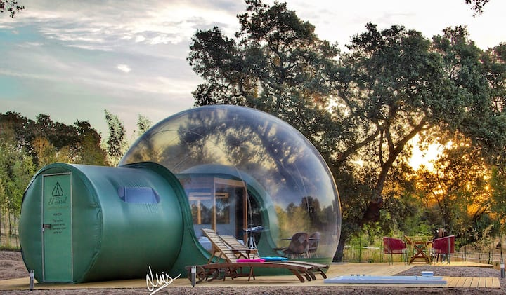 Sky Bubble Epicuro | El Toril Glamping Experience