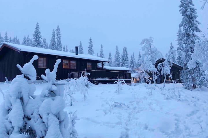 Koselig familiehytte med ski inn/ut