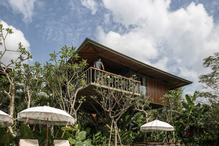 [SPECIAL] Honeymoon Designer Treehouse great views