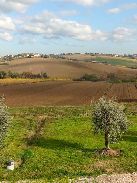 Da Fabiana - Camera doppia zona Coriano (Rimini)