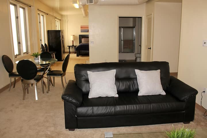 Beautiful Downtown Apartment, Great Location!
