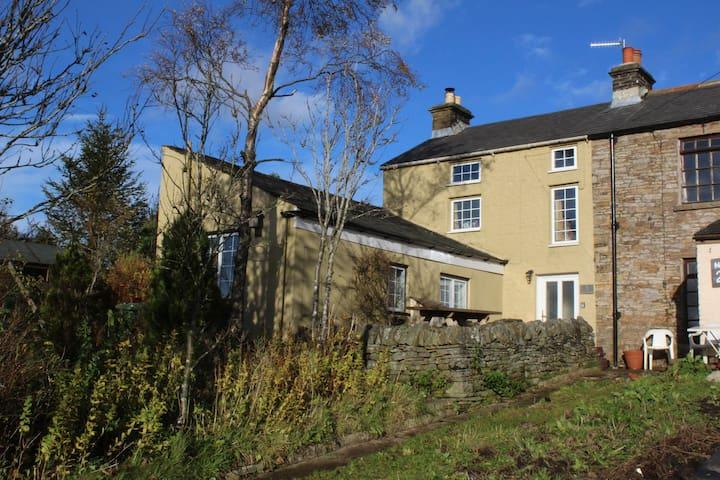 Old Miner's Cottage