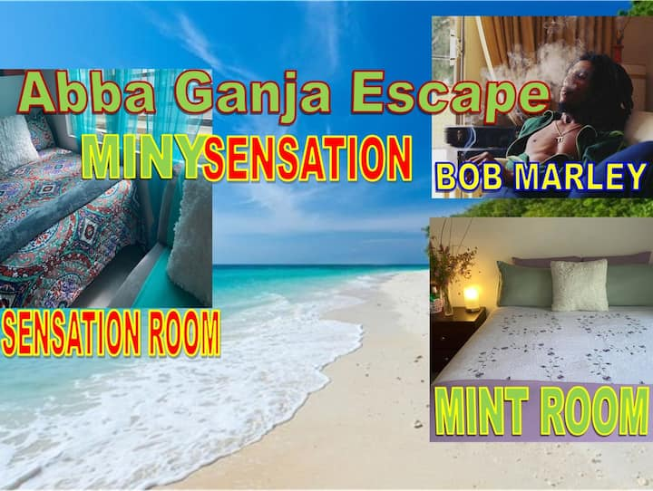 Abba Ganja Escape (MintySensation) Sleep 8For1Cost