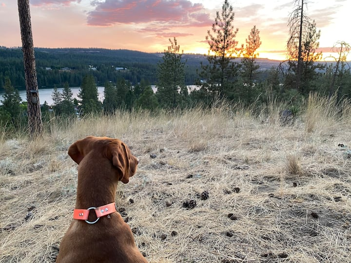 Country Vacation Stay: Mules, Rock Climbing & More