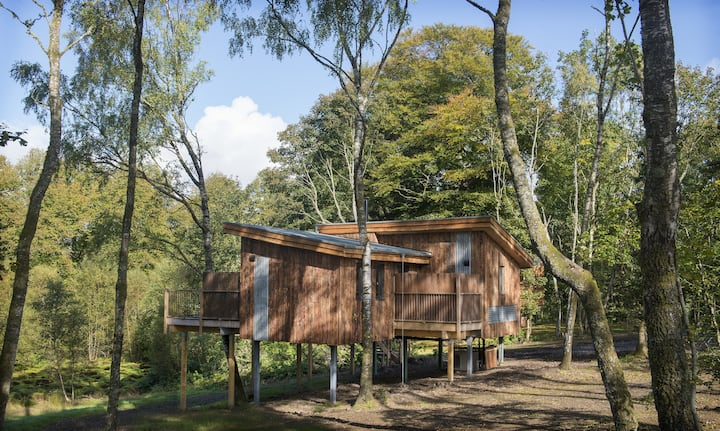 Treecreeper, Eco Treehouse in Scottish Highlands